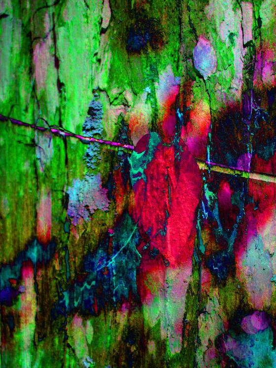 Digital Art tree trunk and leaf