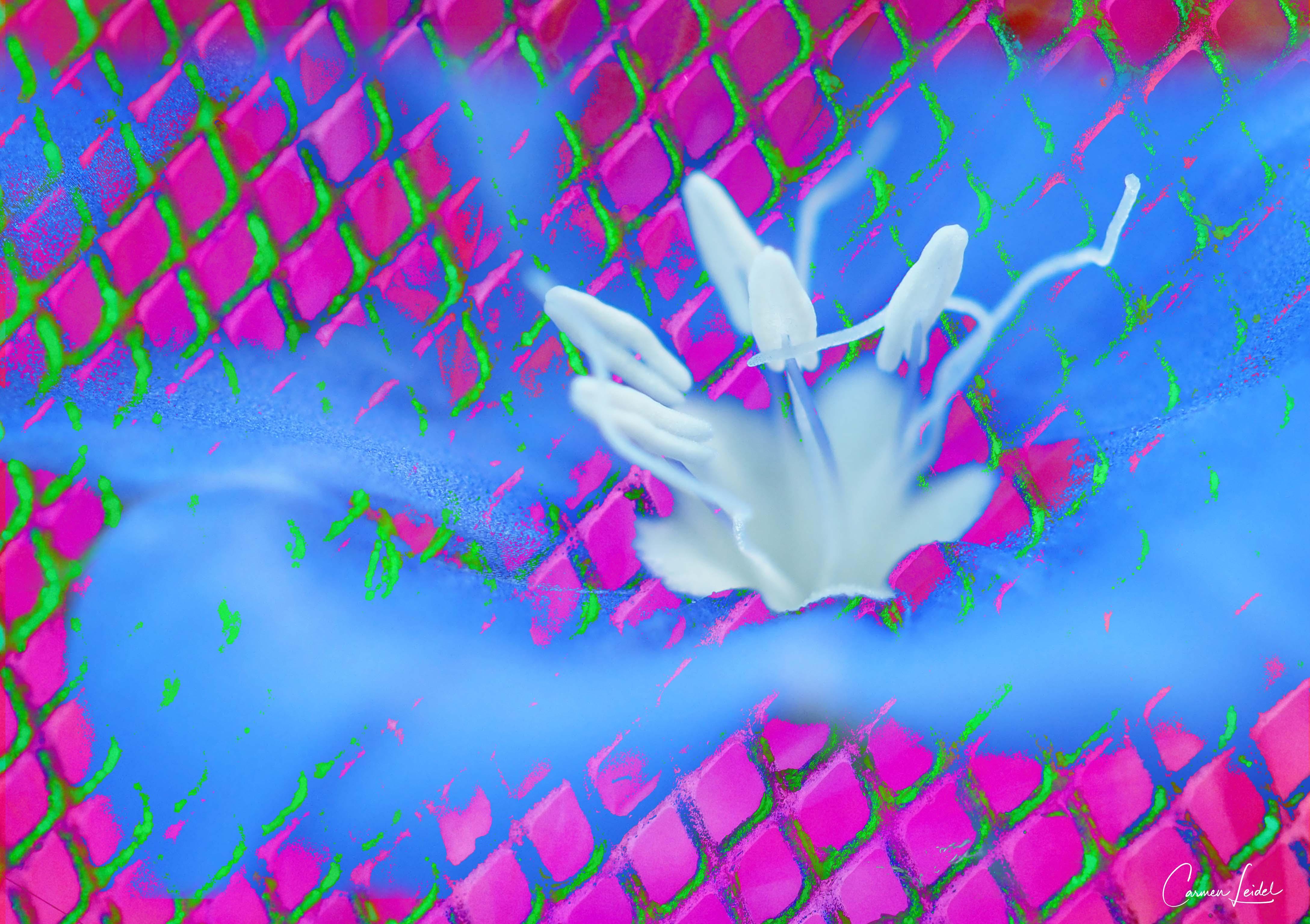 Blue My Mind Flower
